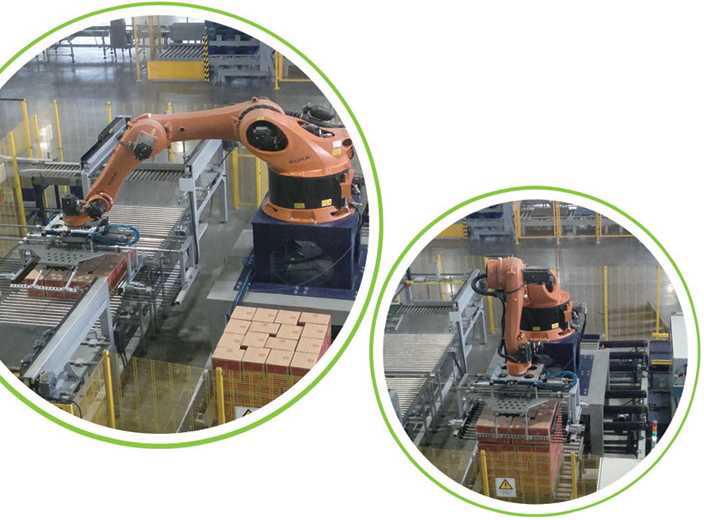 全自动机器人码(卸)箱跺机3